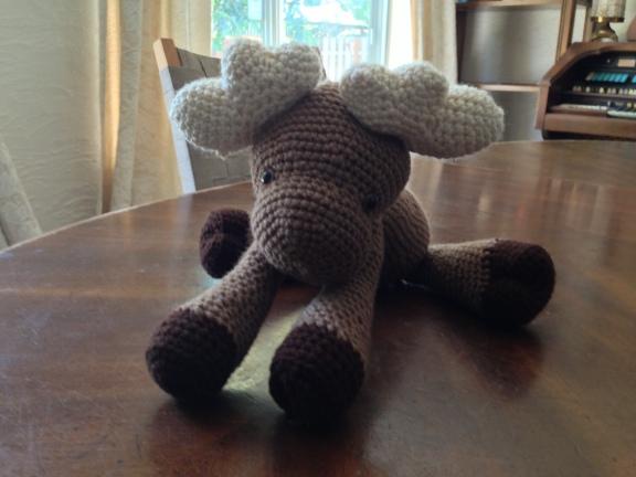 Bellsy Moose doing yoga